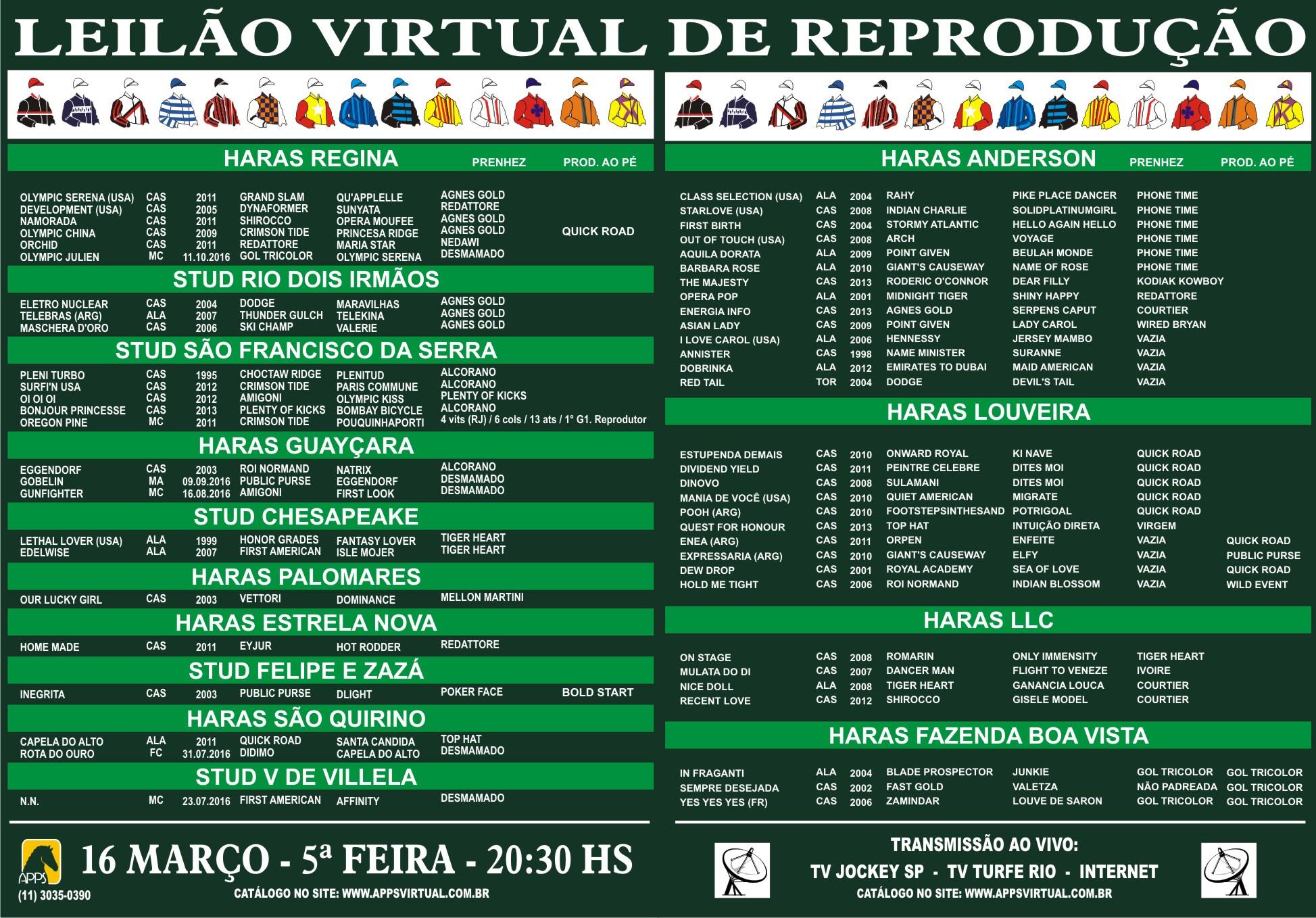 50a559bdfb9 APPS - LEILÃO DE QUALIDADE